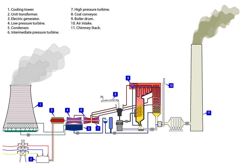 Single cycle steam turbine power plant — zeroco2